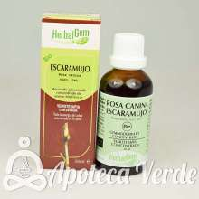 Escaramujo de HerbalGem 50 ml