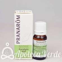 Aceite esencial de Eucalipto Azul Citriodora de Pranarom 10ml