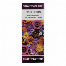 Equisalud Flower Of Life Proteccion 15ml