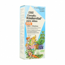 Salus Floradix Kindervital Fruity 250Ml