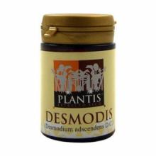 Plantis Desmodis Desmodium 60cap